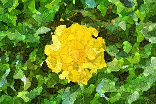 Flower-Artie_Navarre